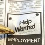 Junior Web Business Analyst - Sydney, Australia - Job Description